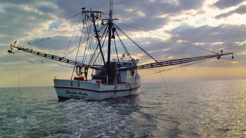 GSI Responds to Criticism of Rubio's Fisheries Act