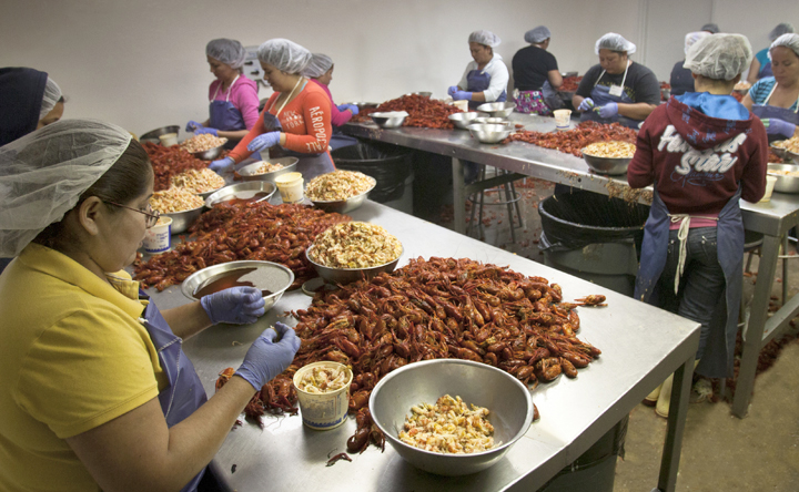 Louisiana Mudbugs Entangled in Muddy Waters of H2B Regulation