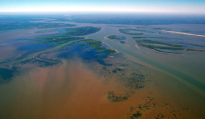 While Louisiana Land Loss Continues, New Lands Appears in Atchafalaya Basin
